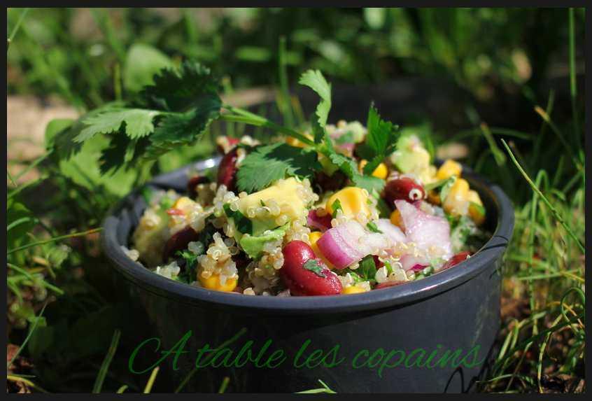 Salade de quinoa, haricots rouges, maïs et avocat