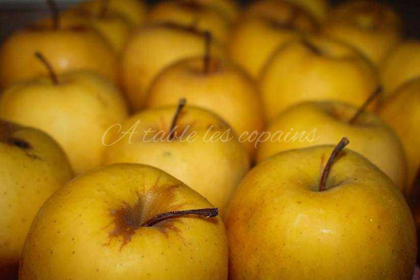 Compote pomme / banane